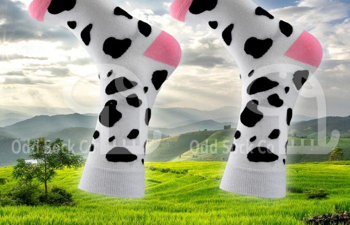 odd sock co cow print socks