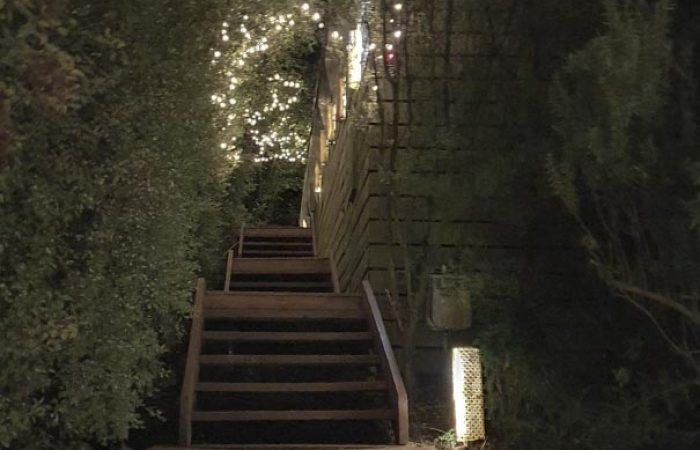 fairy light walkway at daybreaker daylesford