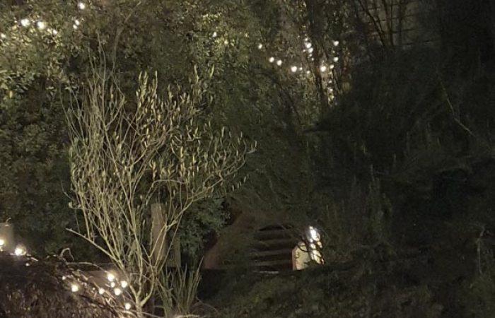 lighted steps at daybreaker daylesford