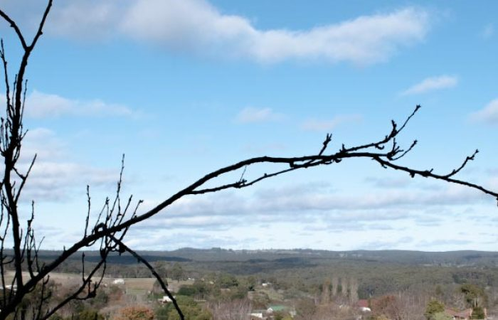 view of hepburn countryside at daybreaker daylesford