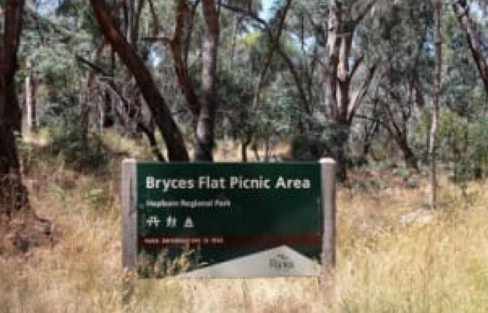 bryces flat picnic area scene